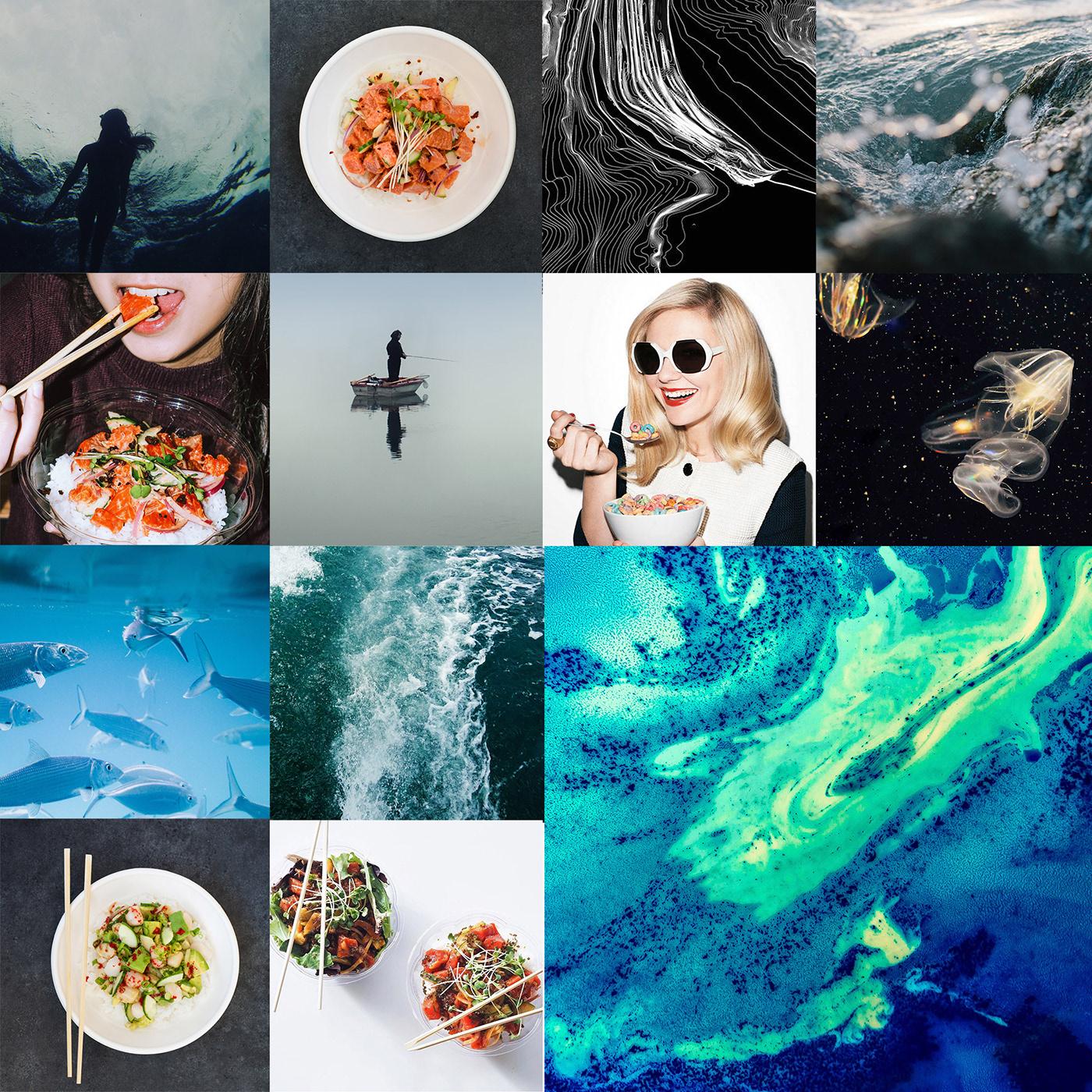 Sustainability Food  beverage restaurant deli fish poke Sushi lifestyle take away