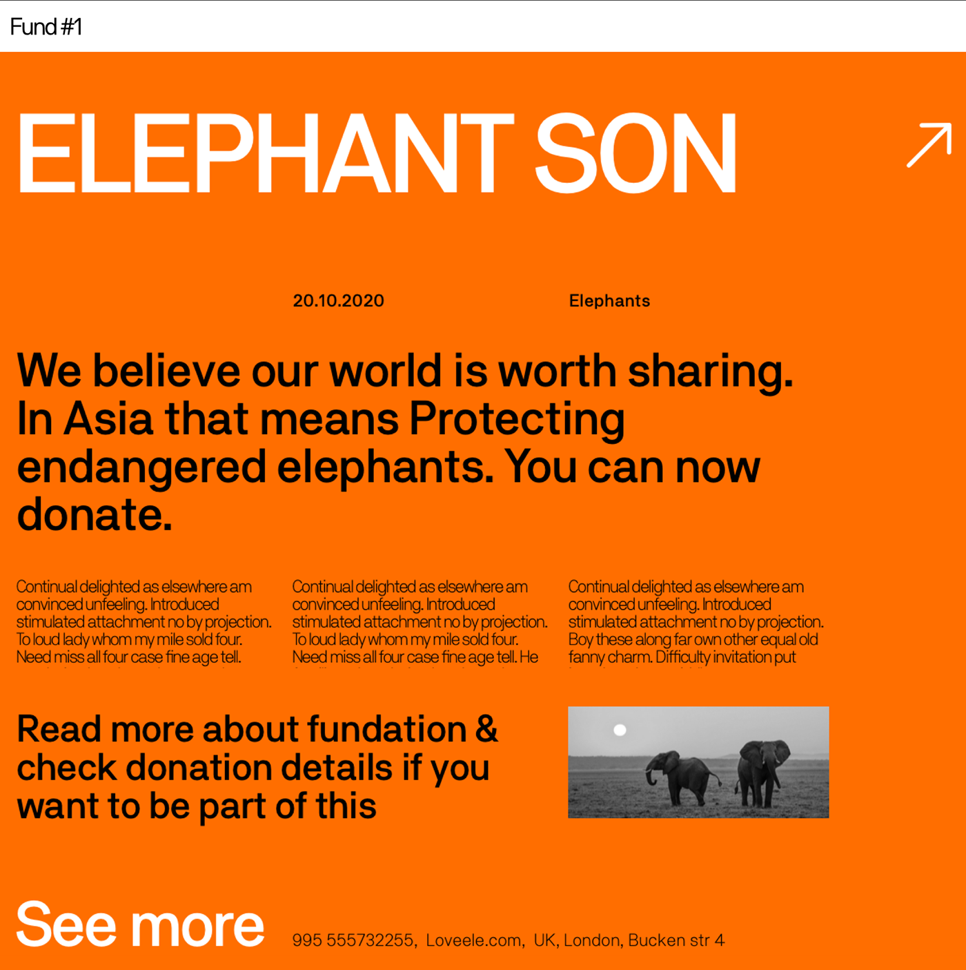 Fund page describing detailed info about elephant survival problems.