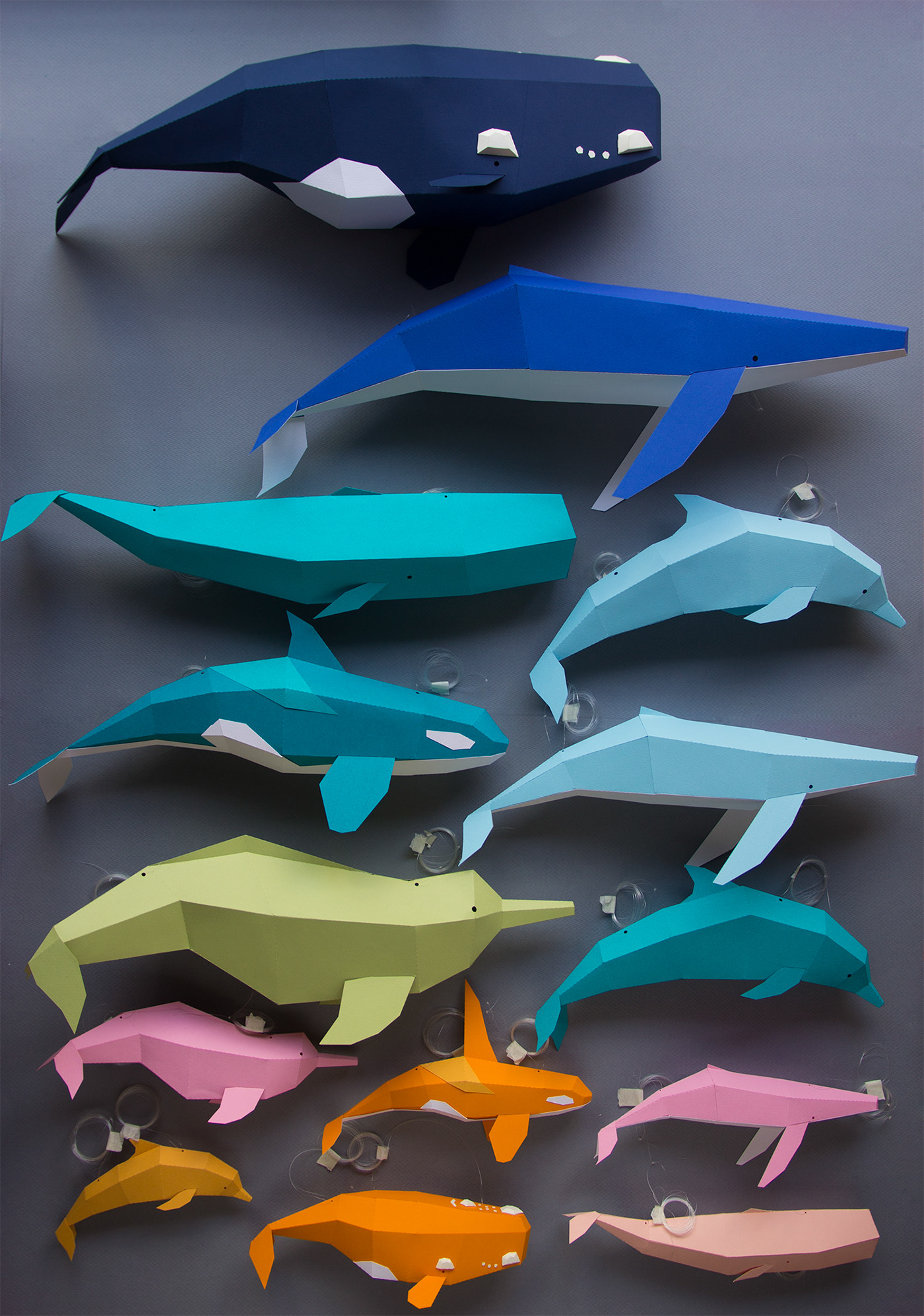 papercraft lowpoly paperwhales dolphin humpbackwhale papertoys paperkits DIY orca ballenafrancaaustral