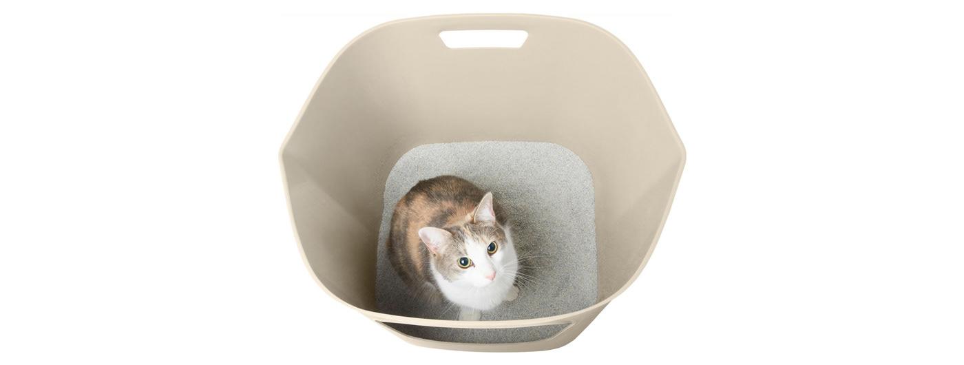 box Cat chewy kattentoilet Litter litter box Pet pet products plastic