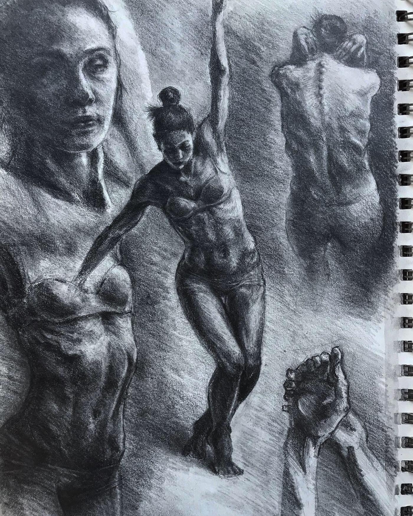 Figure Drawing Drawing  figure anatomy Practice fine art graphite