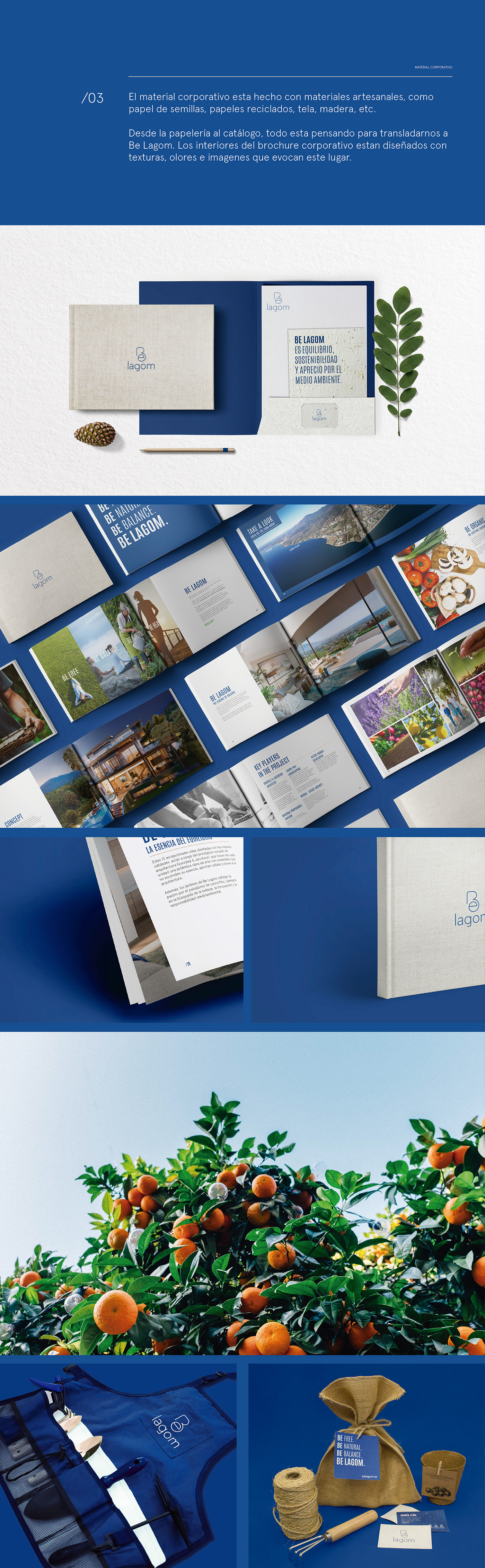 branding  Nature ecologic seed paper editorial design  Plant natural balance brochure brand