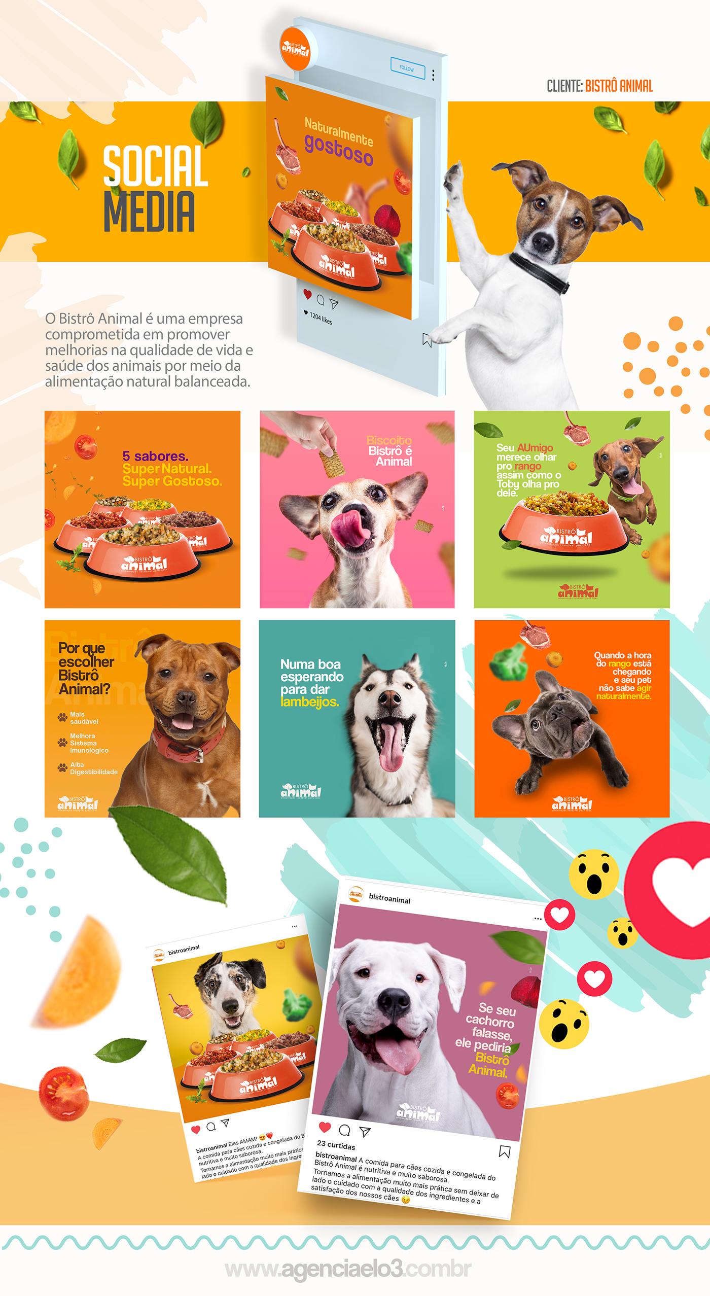 bistrô animal Pet cachorro comida de cachorro