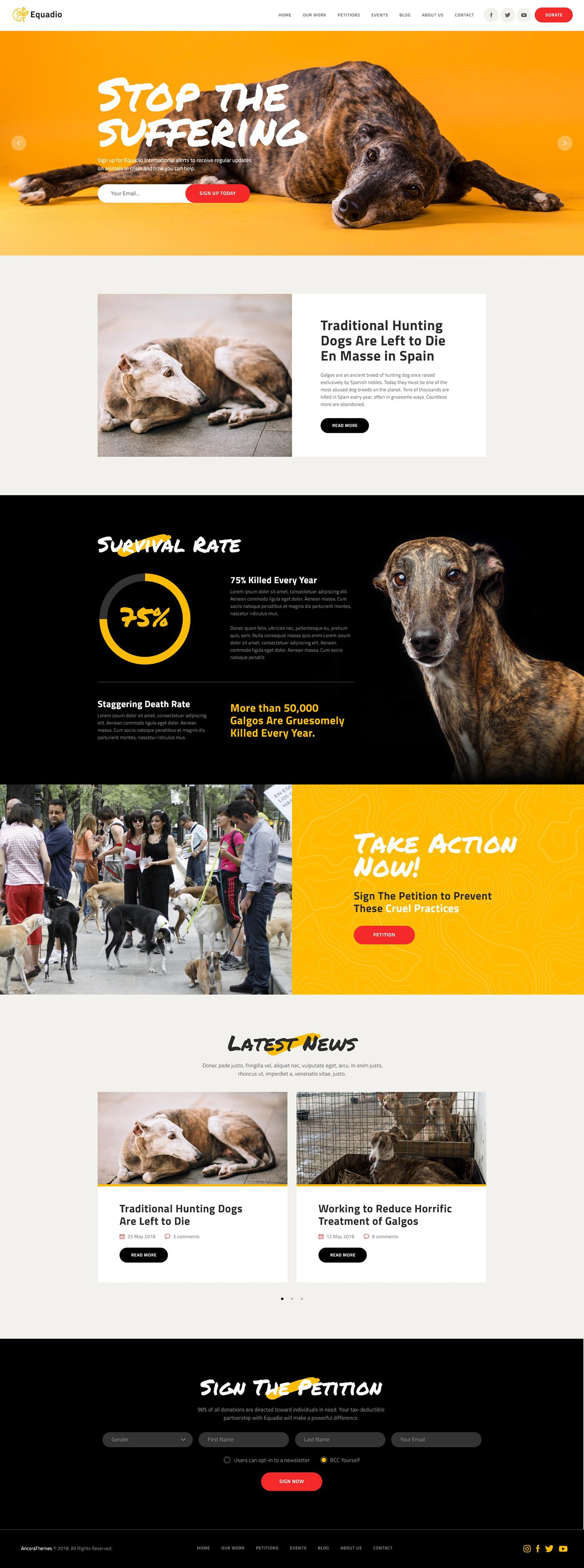 Image may contain: dog, animal and carnivore