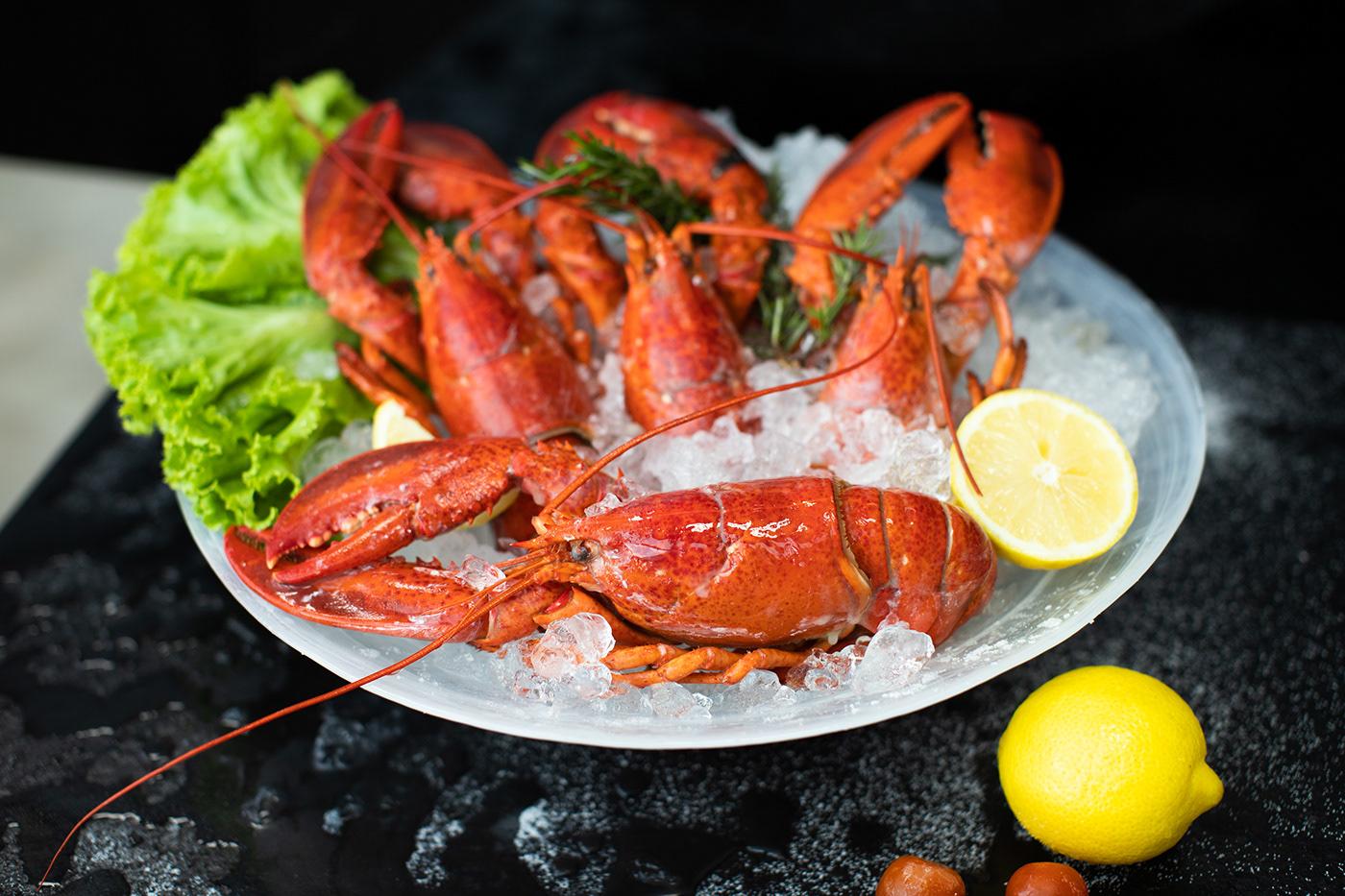 Logo Design seafood Web Design