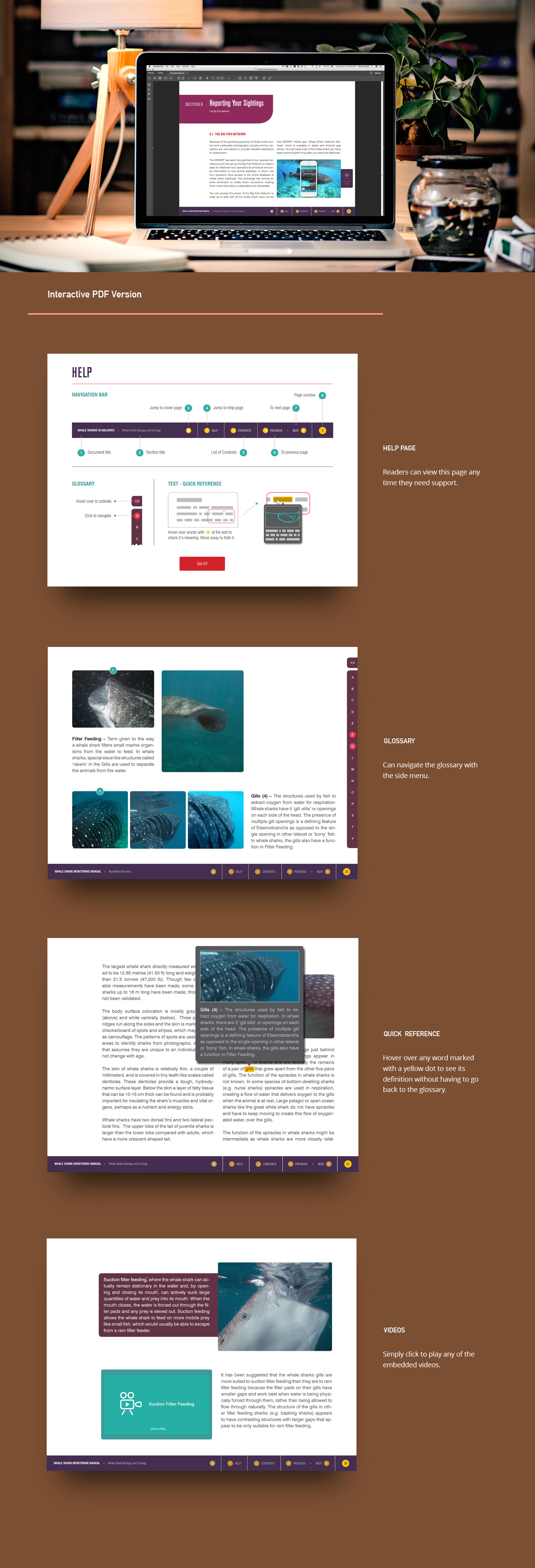 whale shark Maldives manual shinaz Interactive PDF iBook kindle report Layout publishing