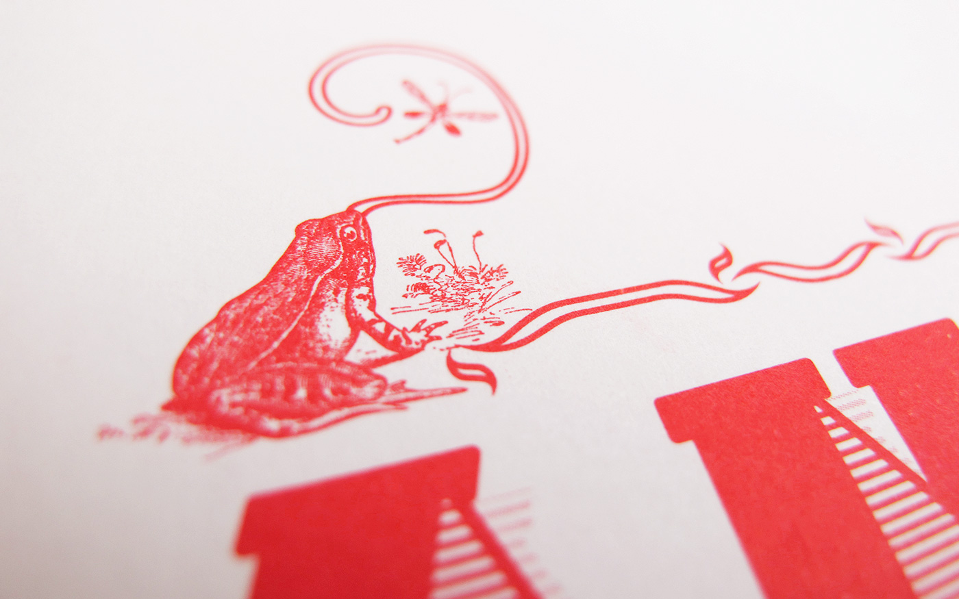 birth announcement spot color offset pantone red girl frog engraving