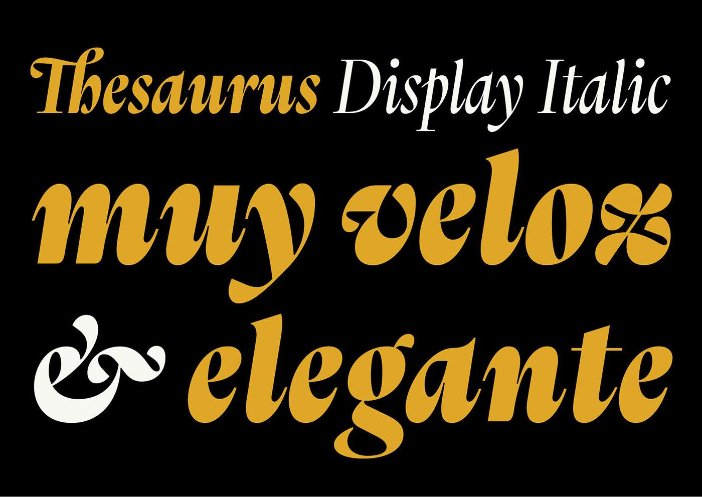 Thesaurus Display Italic On Behance