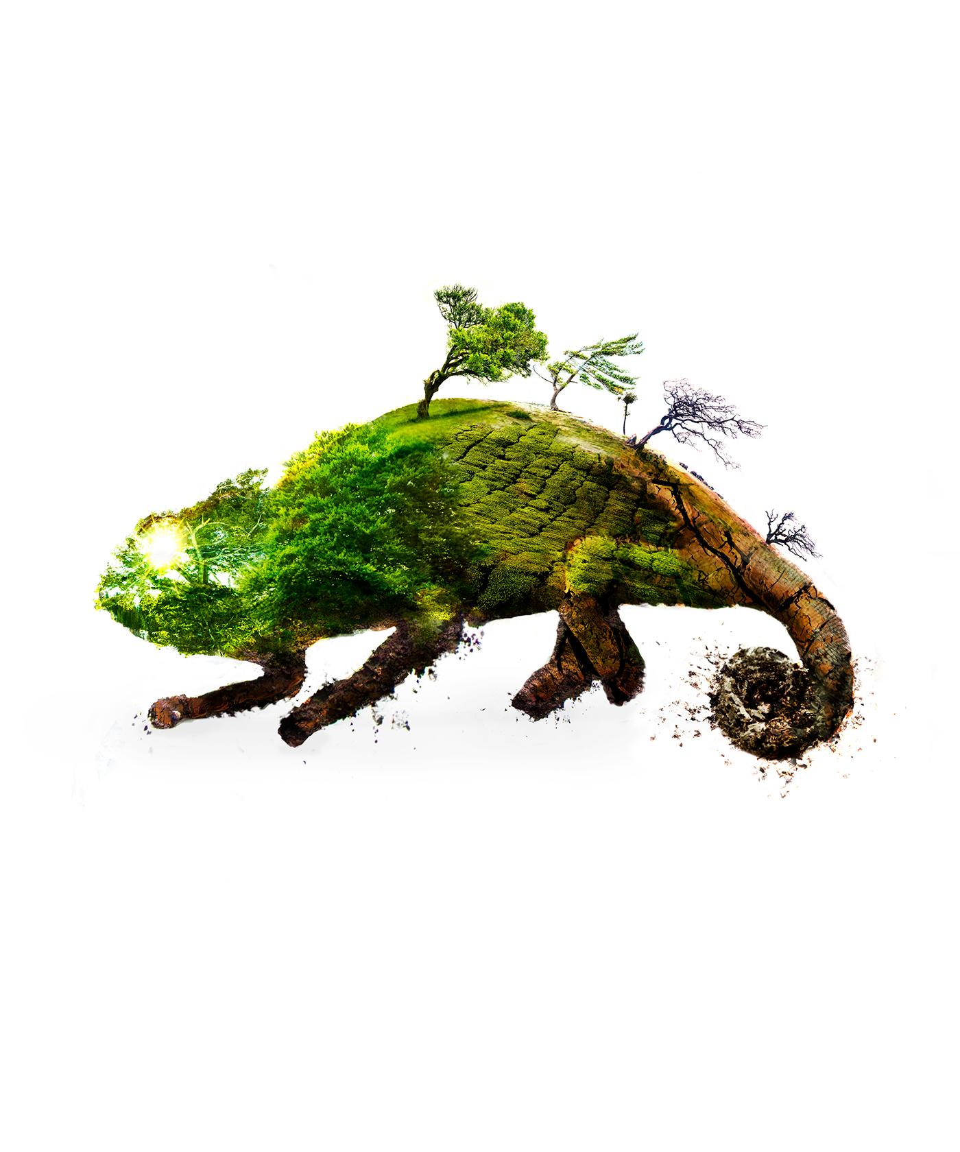 精品的20款環保海報欣賞