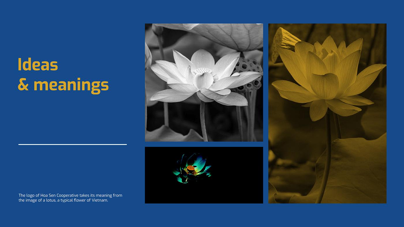 Brand Creative Branding design car branding Identity Design logo new  logo type Lotus Branding vietnam