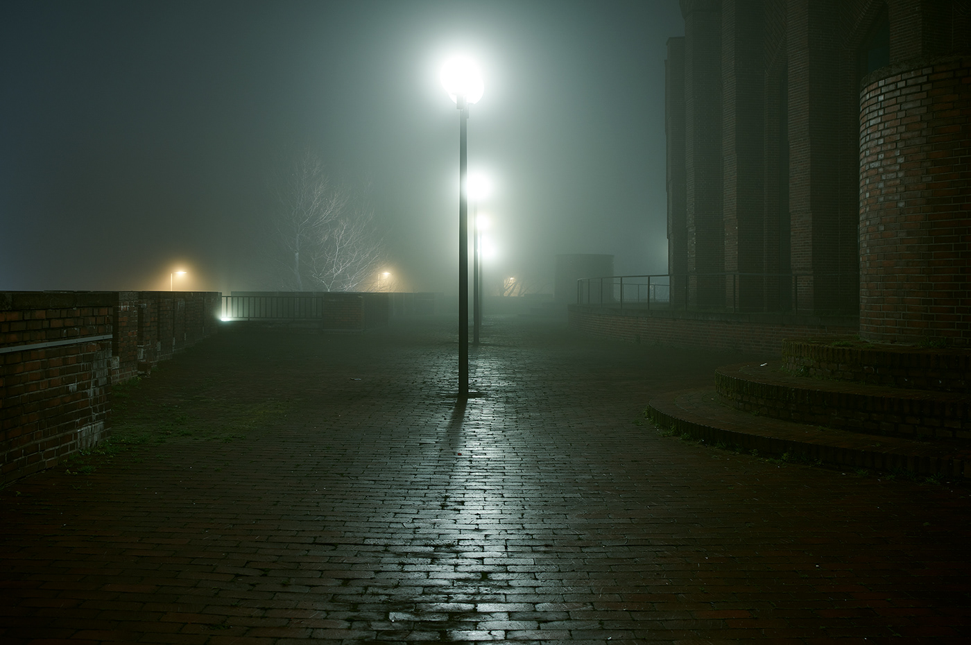 Image may contain: street light, fog and sky