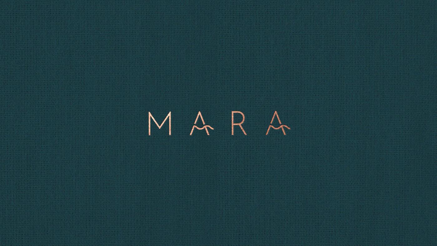 art direction  branding  design luxury menu minimal Photography  restaurant scotland Sustainable