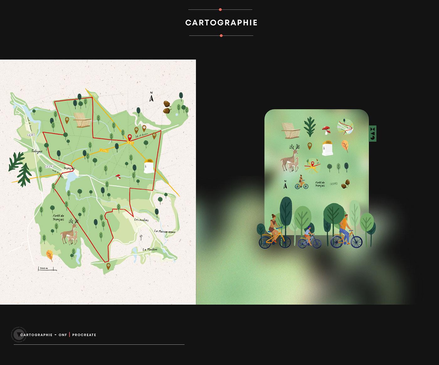 Advertising  Cartographie flower illustrafolio ILLUSTRATION  Illustrator portrait Procreate Typographie