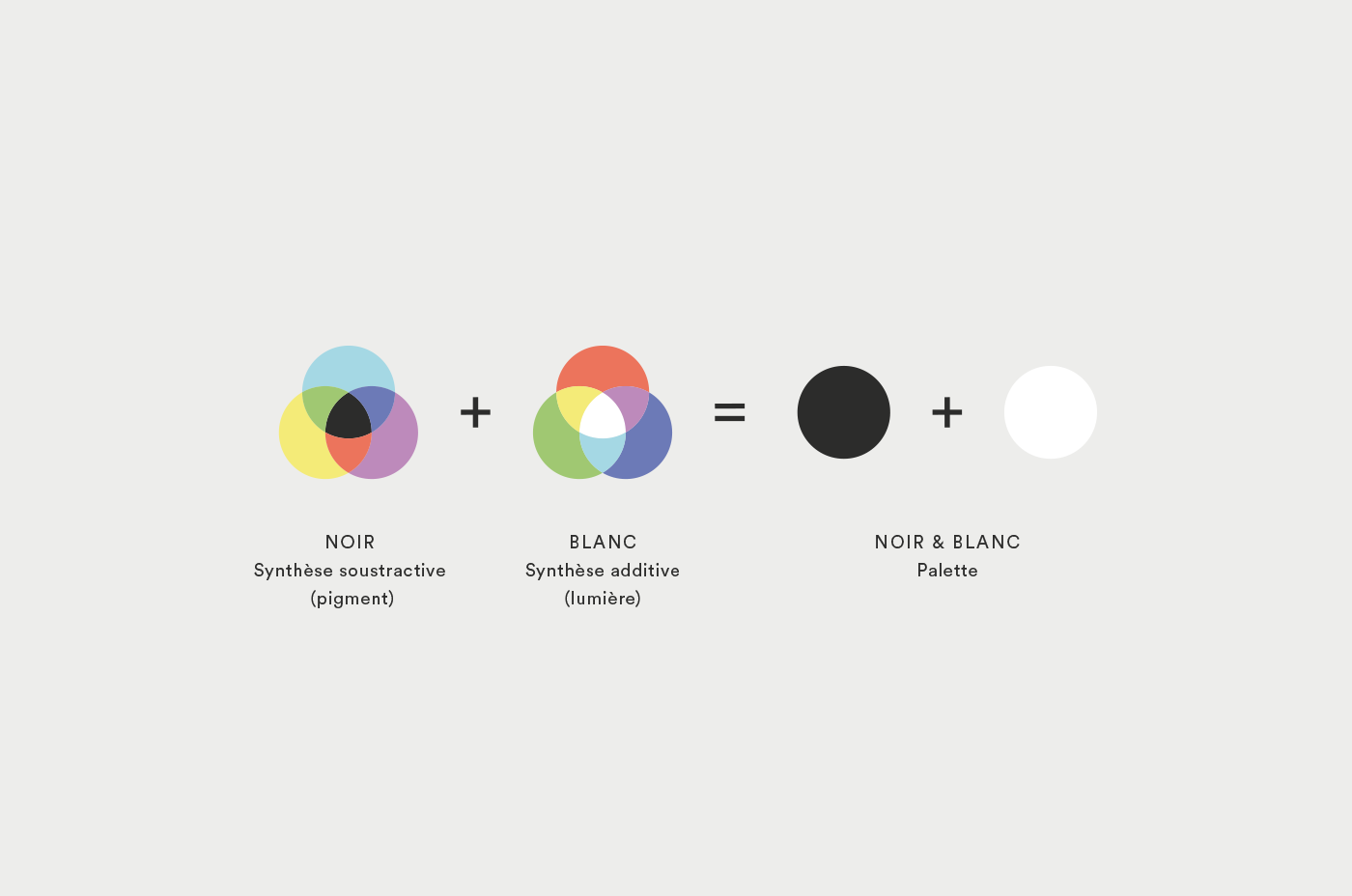 branding  logo identity Cinema Film   colorist