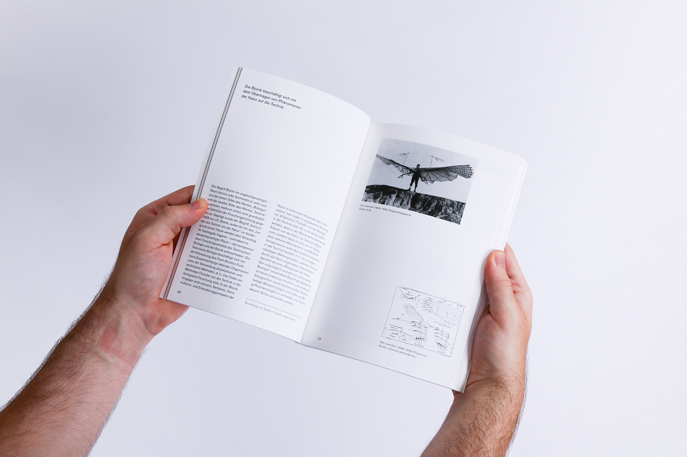 typography   architecture Nature biology bionics graphic design  book design research science editorial design
