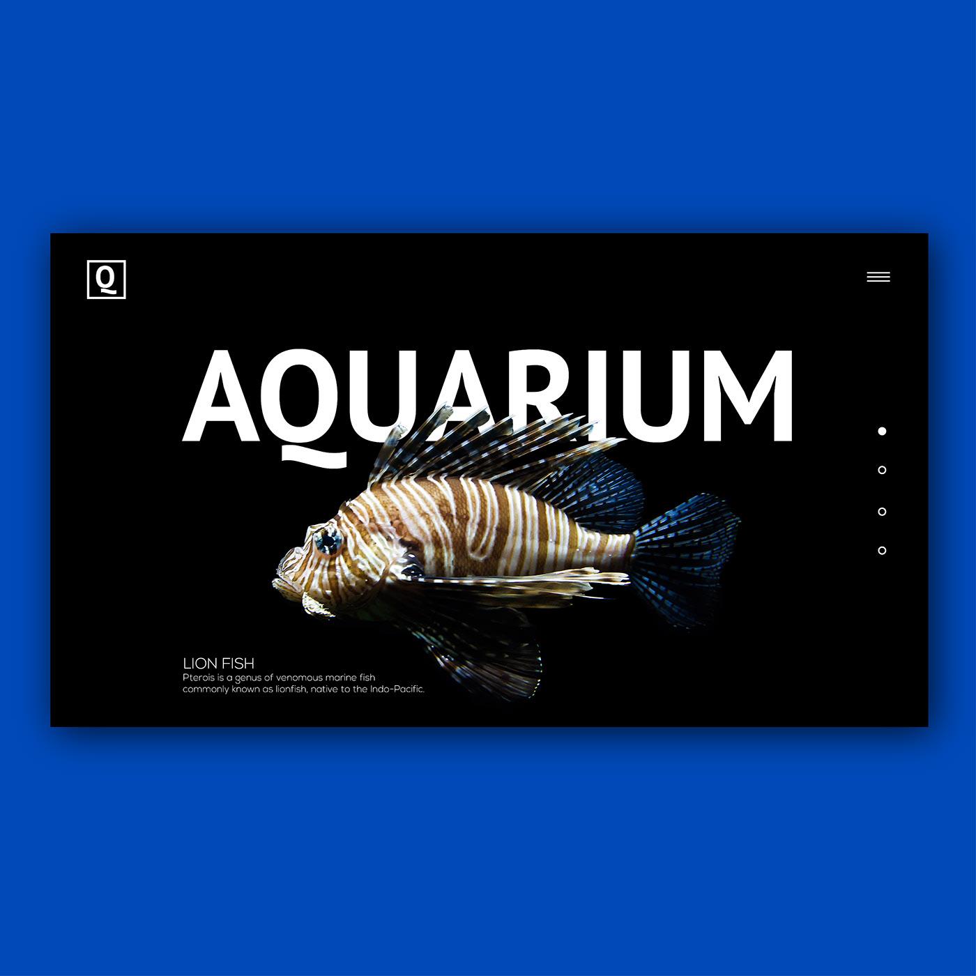 UI ux aquarium fish branding  landingpage slider Webdesign Interface