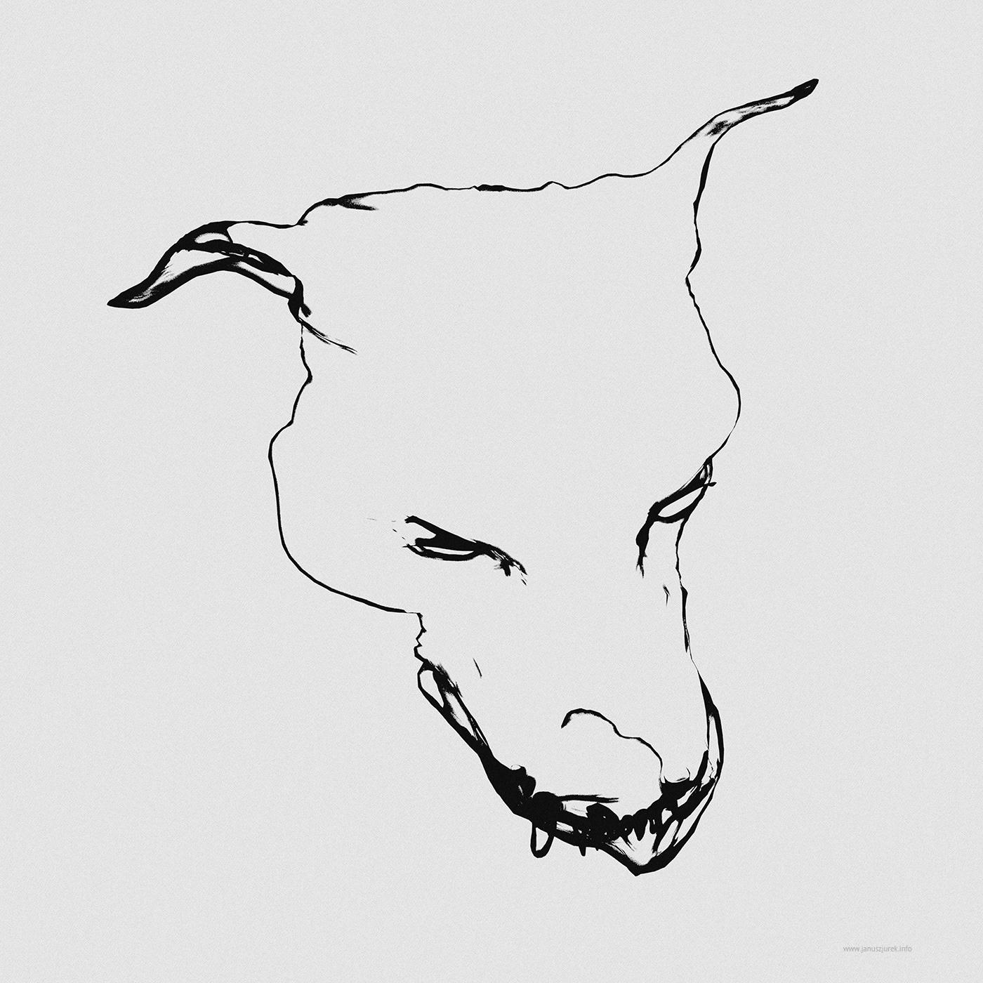 animal animals dods dog generative janusz januszjurek jurek  line poster