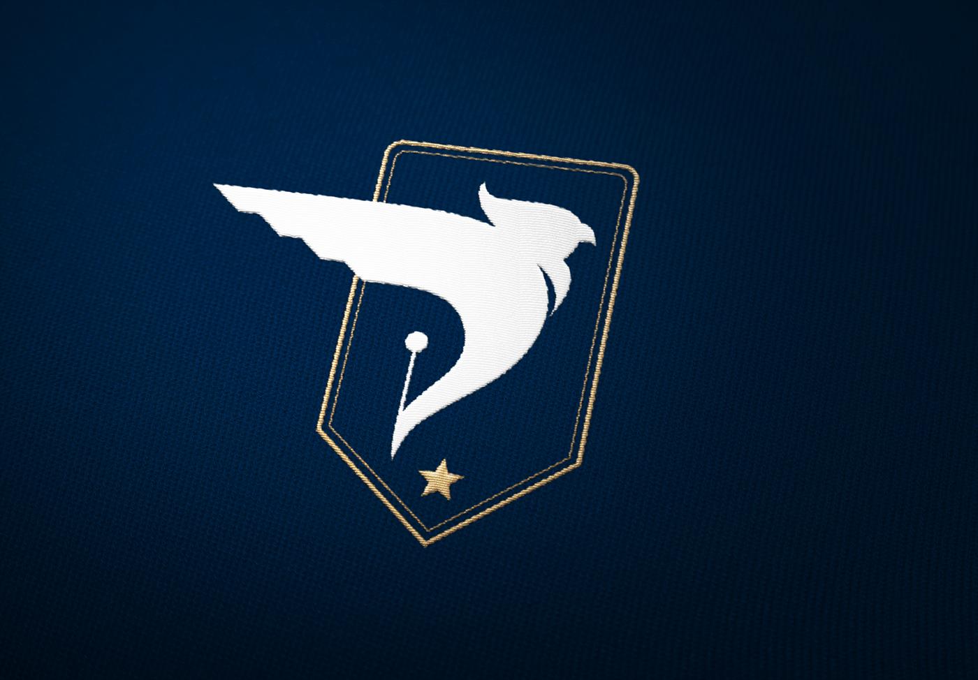 branding  identité blue gold corporate army agence bird identity