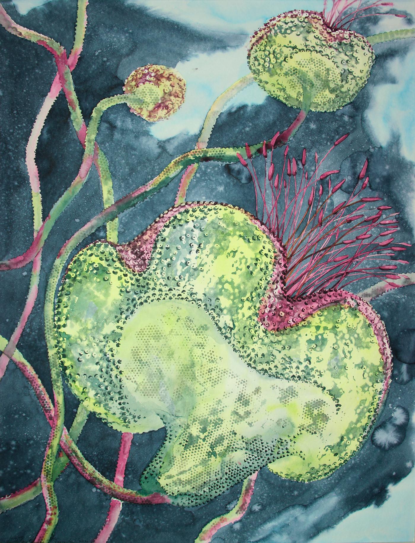 Flowers graphic snake акварель графика змеиный цветок Иллюстратор художник цветы