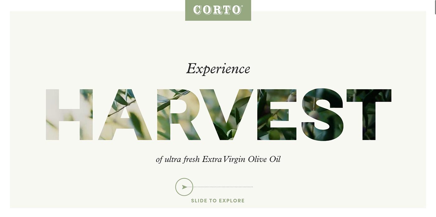 Corto Olive homepage designed by Affinity Creative Group.