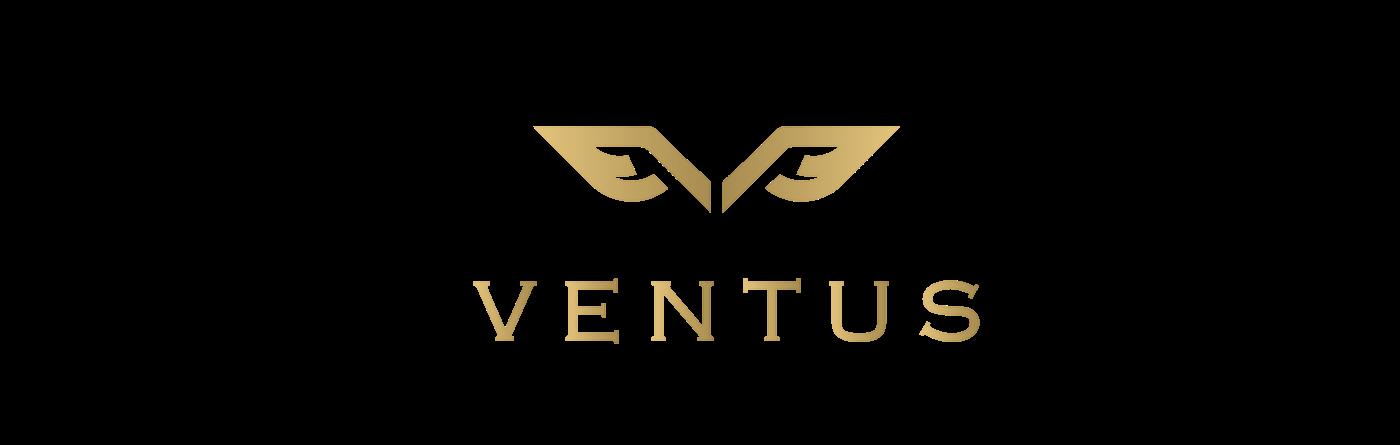 car Car rental logo Trikala Mykonos athens luxury brand identity Greece