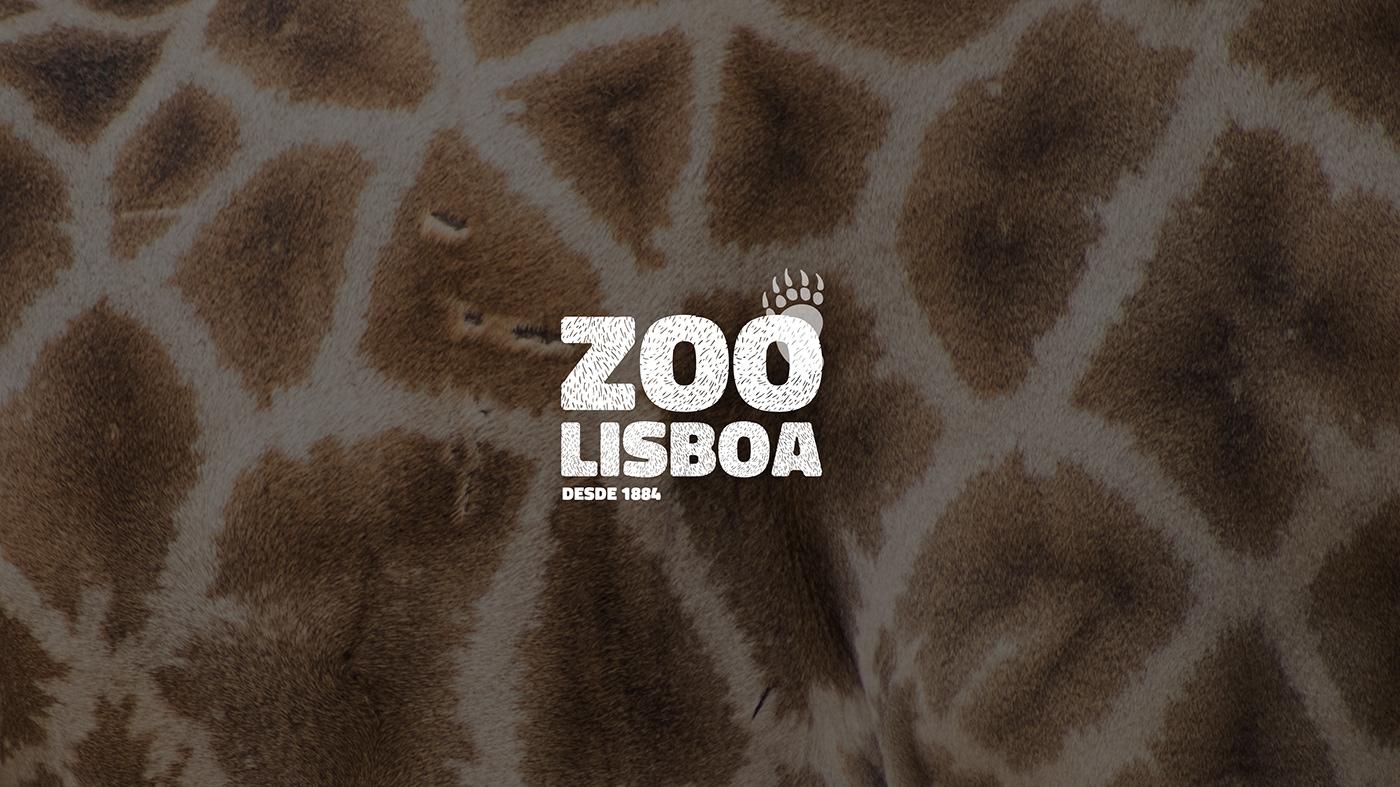 animals bold childish logo Nature Playful wayfinding zoo Photography  wild