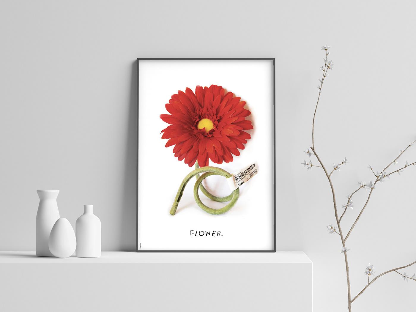 Flowers poster Exhibition  china cina Francesco Mazzenga