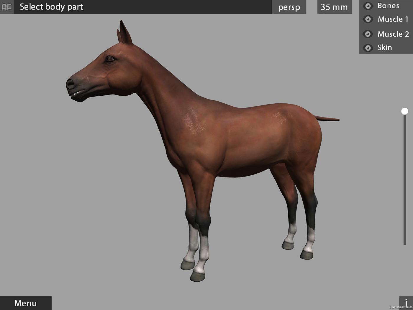 3d animal anatomy app for artists, students, teachers, on Behance