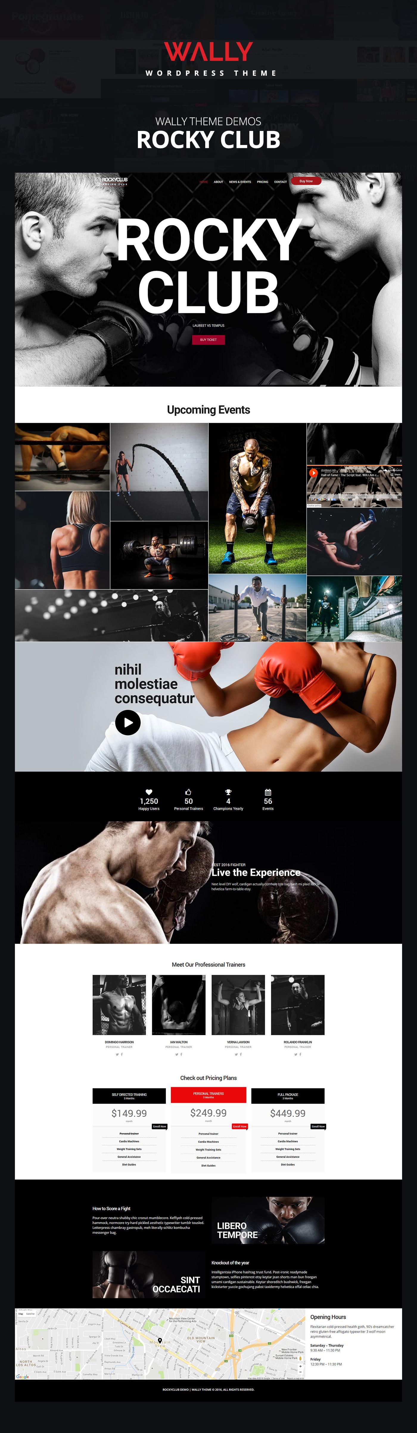wordpress Theme UI ux Web design demo themeforest sport Boxing