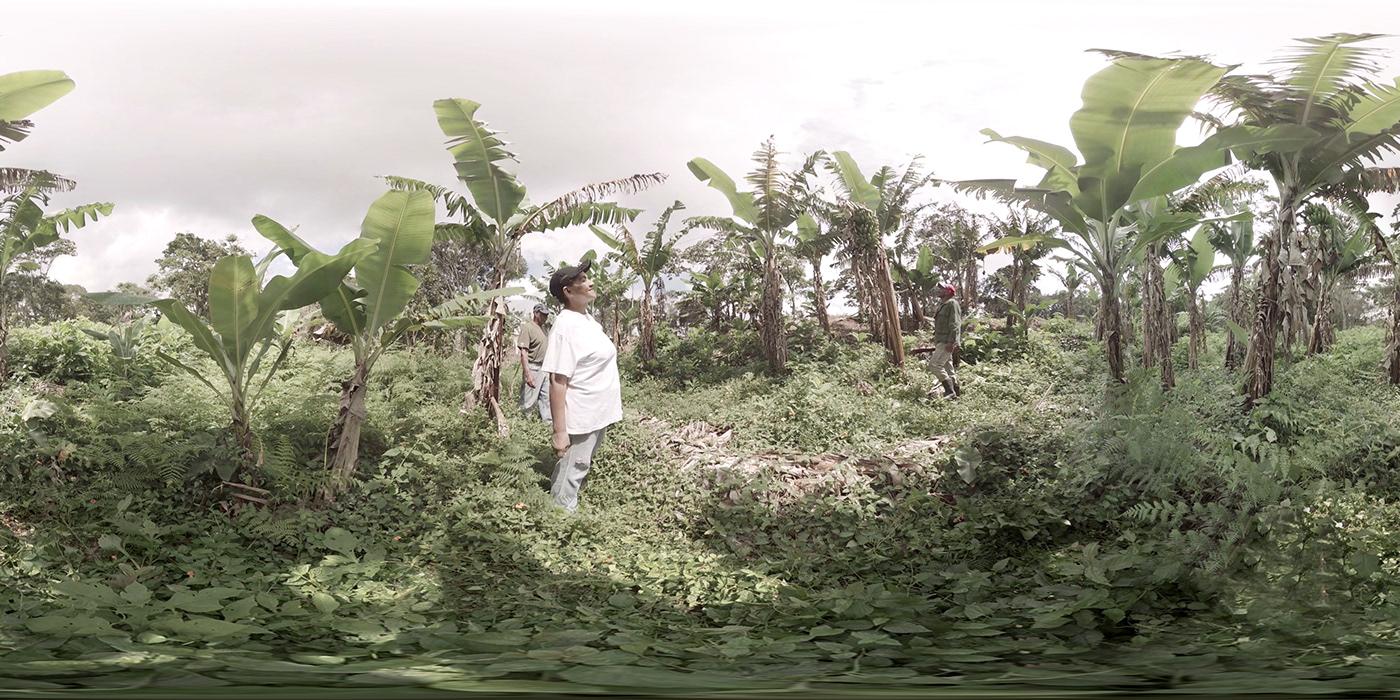 vr Documentary  Coop cooperative economy Production venezuela Chamba   solidarit inmersive