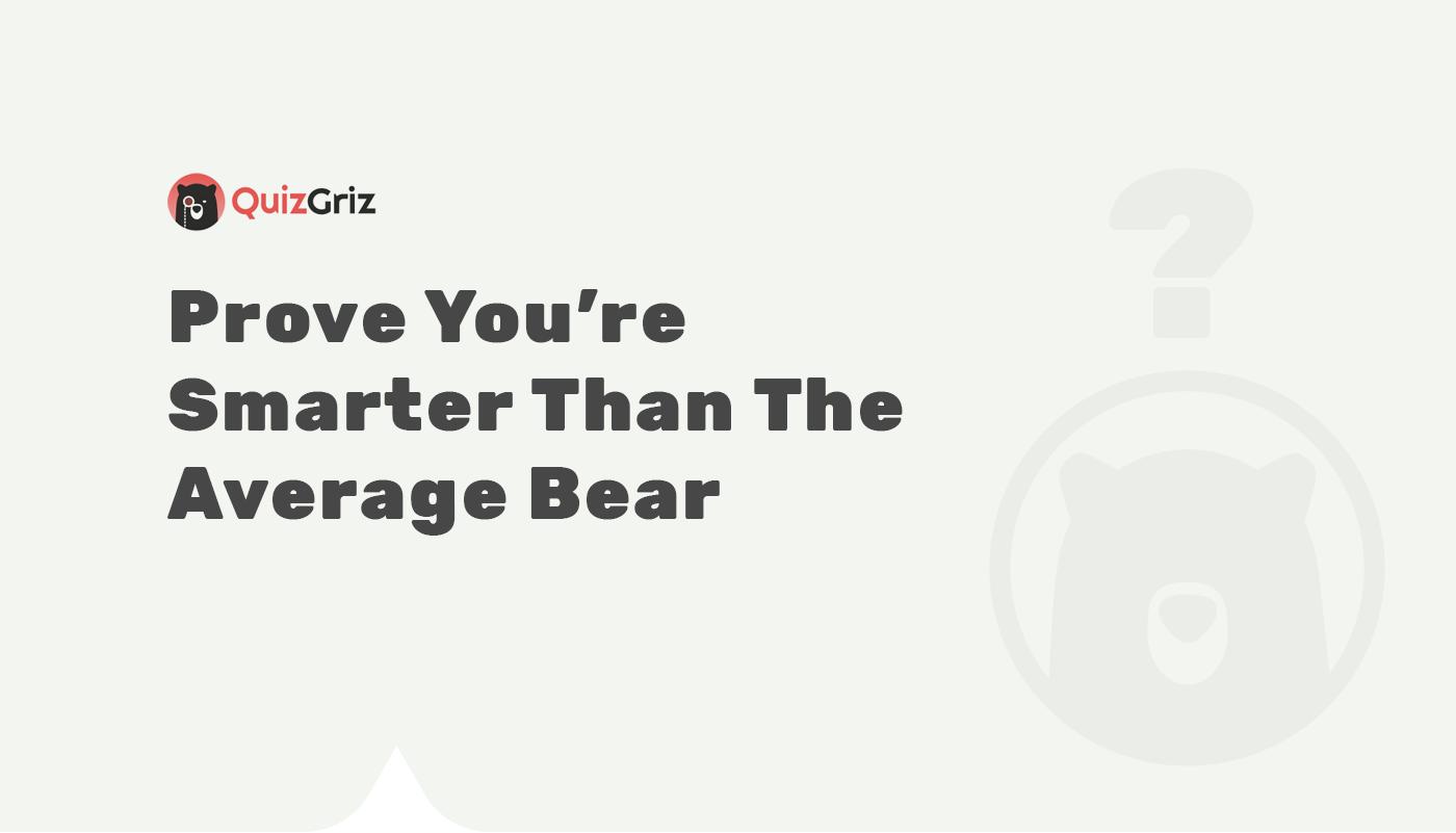 bear Smart Character characterdesign friends Love