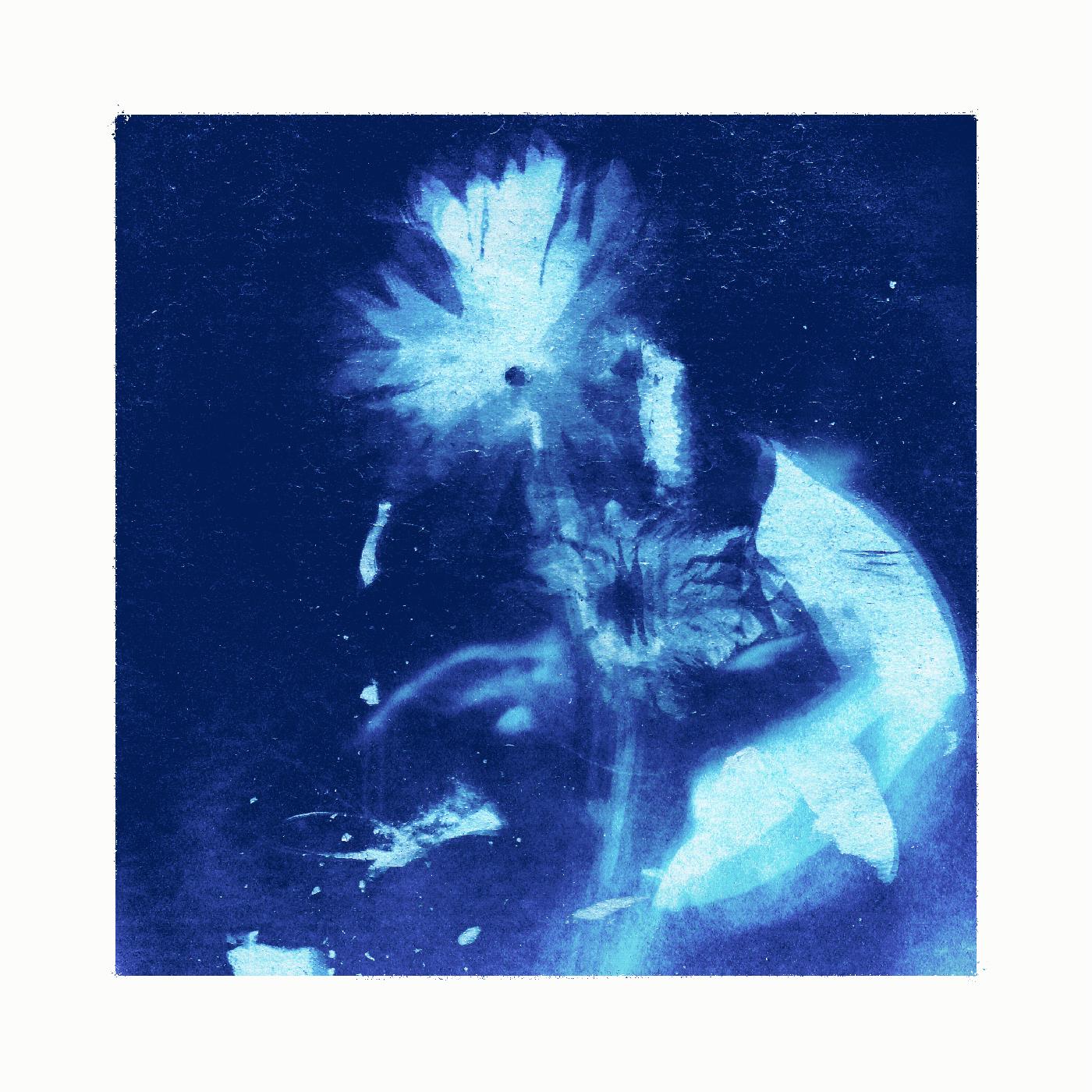 cyanotype Original blue White flower