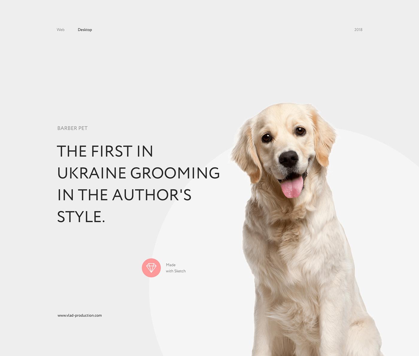 clean flat ux UI Web Webdesign corporate