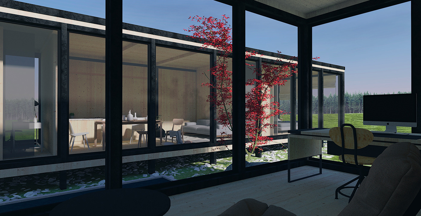 3D architecture house Render SketchUP visualization