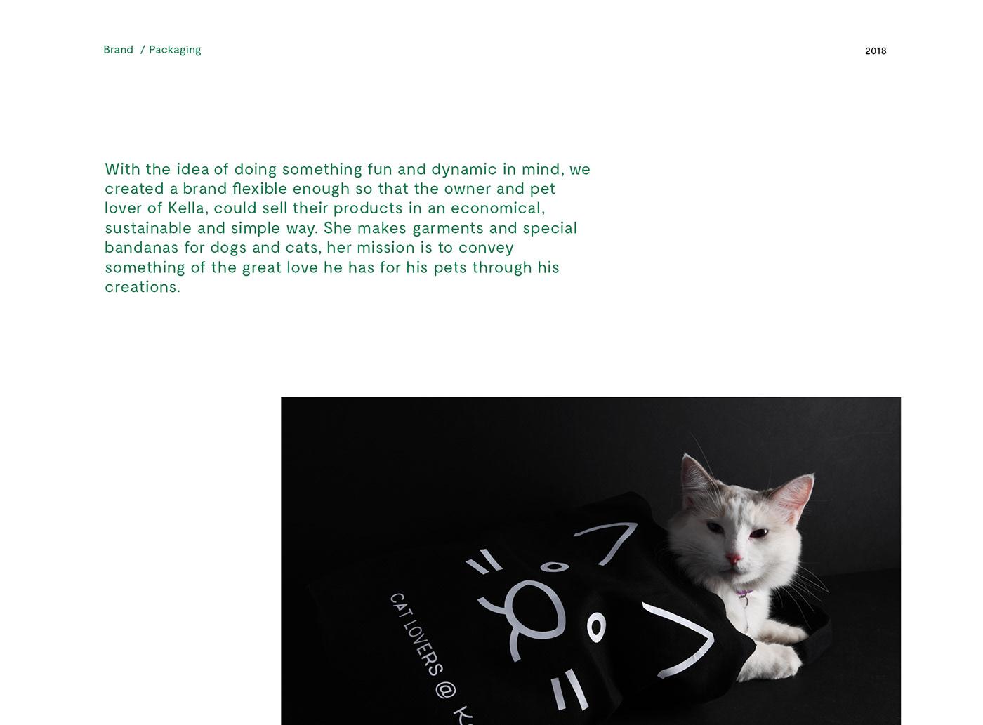pets mexico handmade perritos Clothing Fashion  green cats