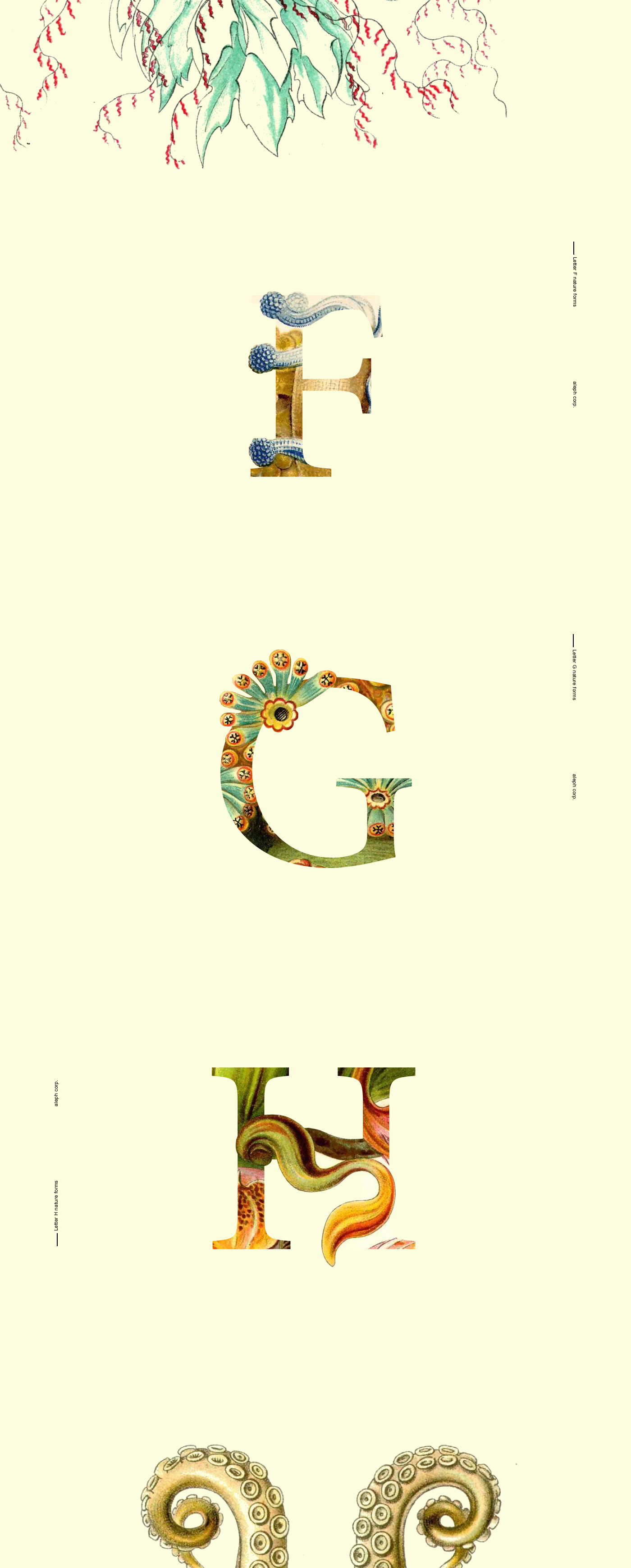 font,vintage,kunst,how to,free,naturalist,germany,biology,creature,alphabet
