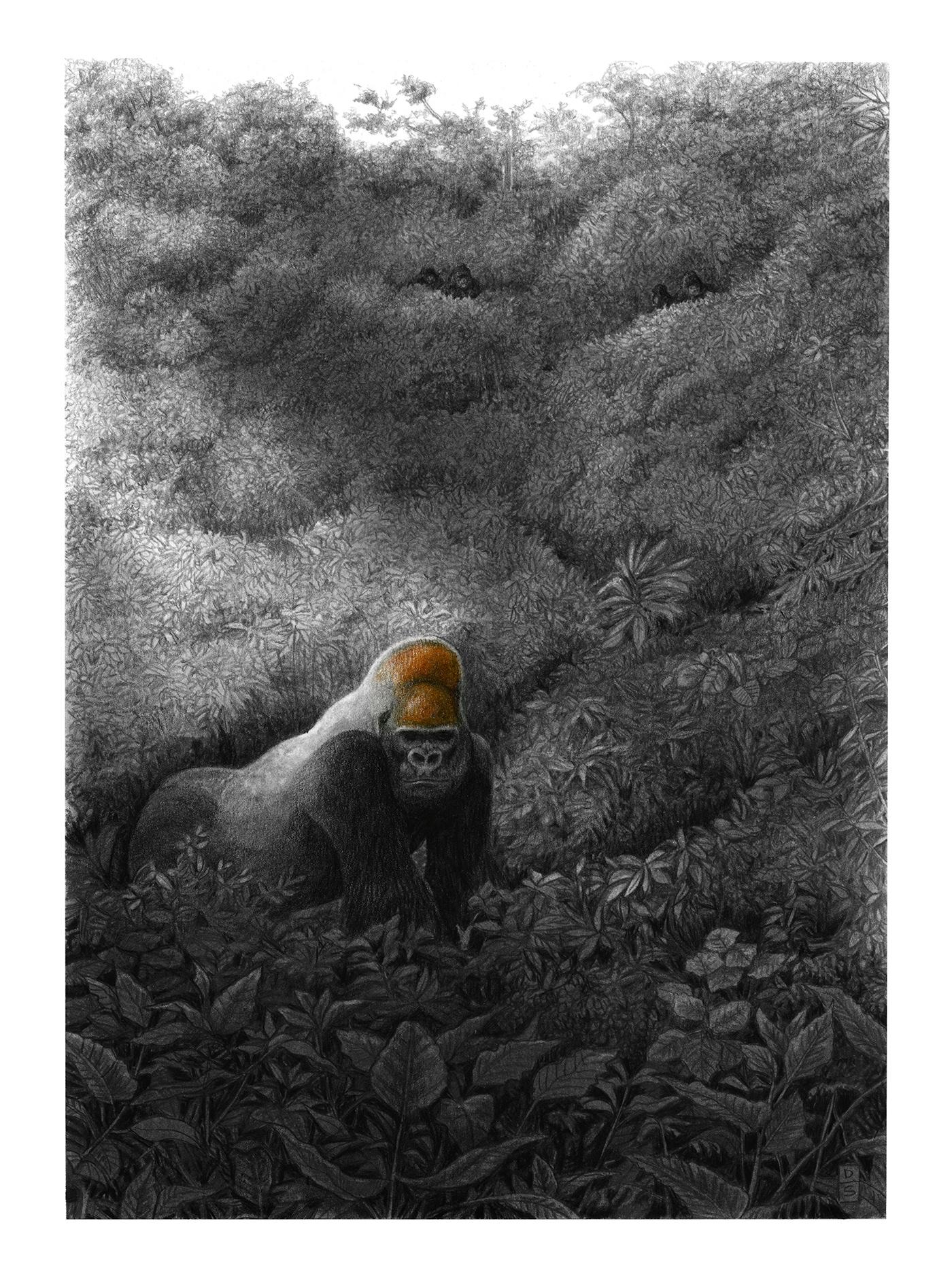 animals gorilla jungle monkey