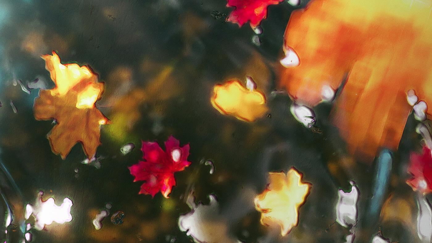 3D artwork cinema4d Digital Art  ILLUSTRATION  Landscape Nature painting   Render SKY