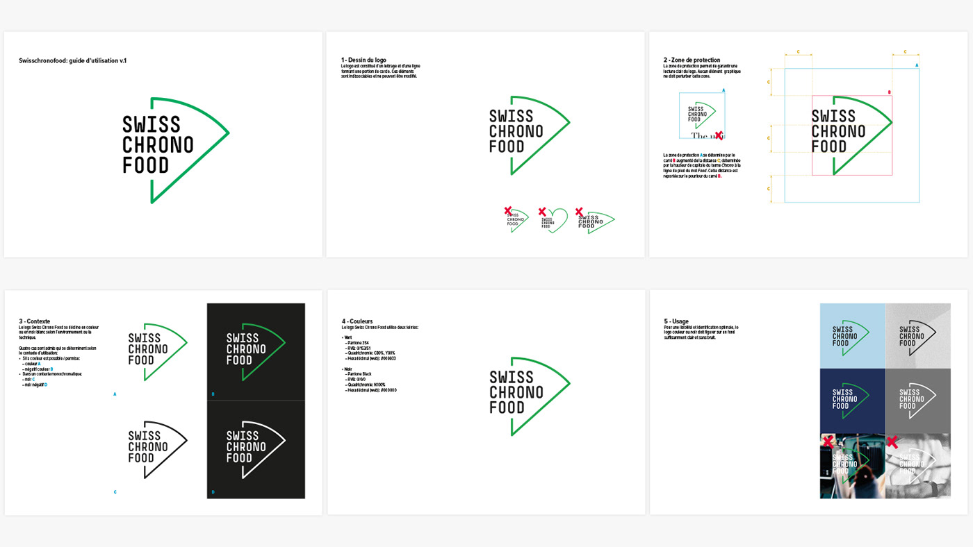 A glimpse of the logo's guidelines