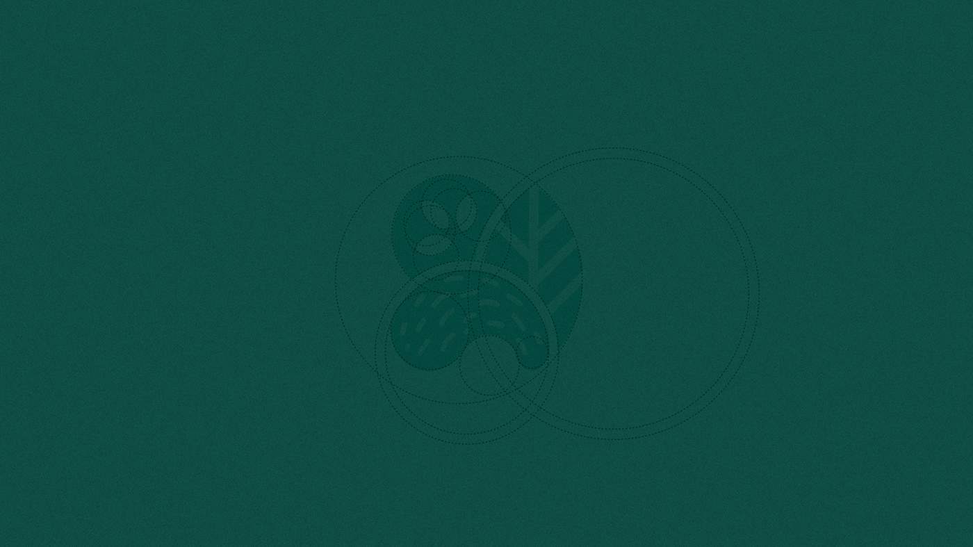 branding  design gráfico marca packing brand logo