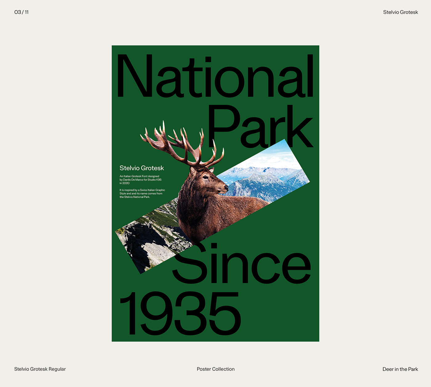 design Exhibition  font graphic poster posters swiss Typeface