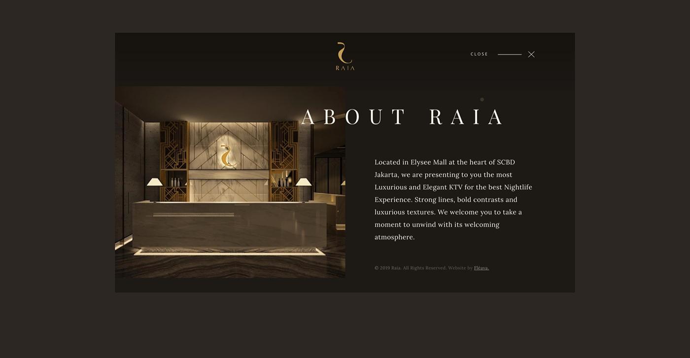 copywriting  media production strategy UI/UX Design Website