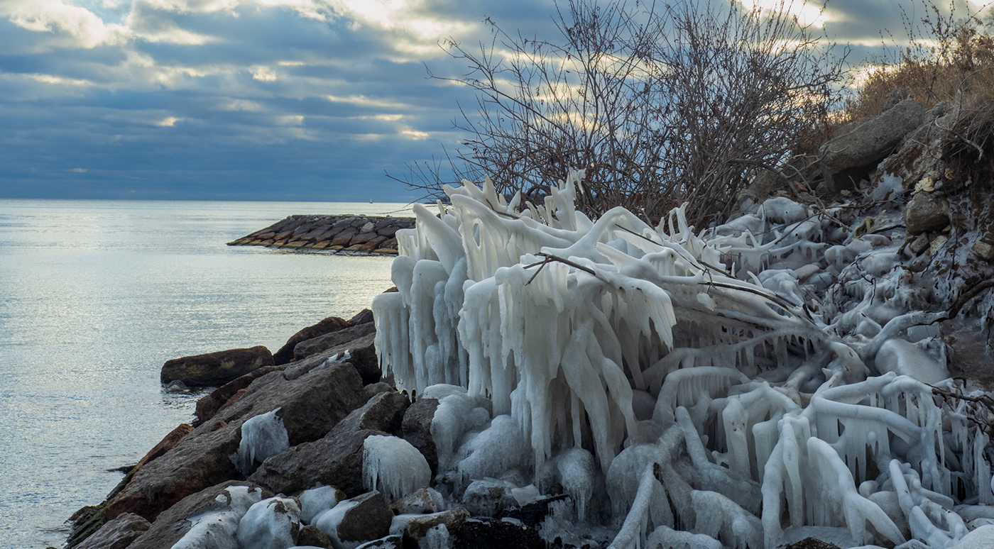 Doris mccarthy Hike Lake Ontario landscapes Nature photowalk Scarborough Bluffs