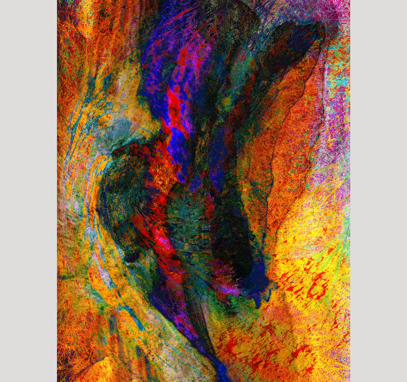 abstrait,couleurs,graphisme,montage,photo,Photographie,photoshop
