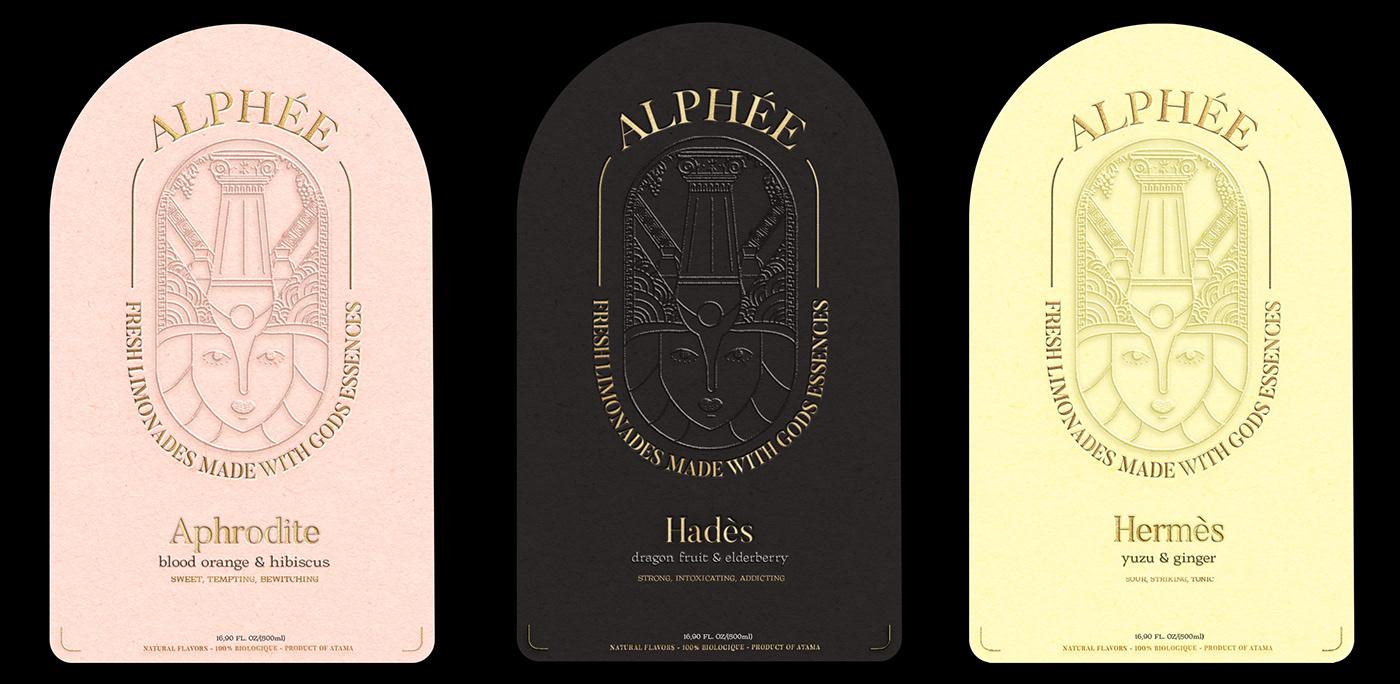 branding  Branding Identity branding Logo can conceptbranding design Logo Design Logotype Packaging