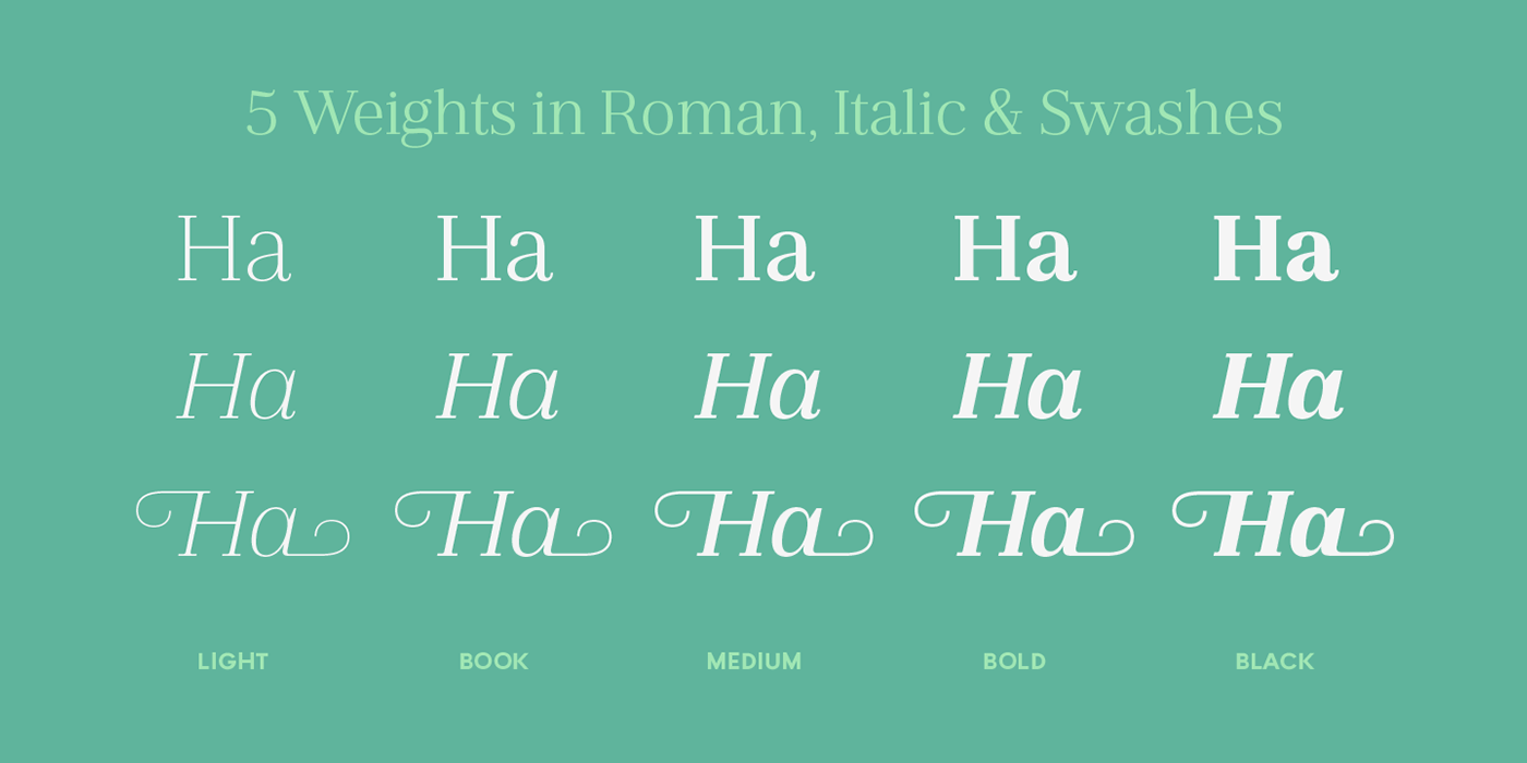 text Typeface editorial Swashes