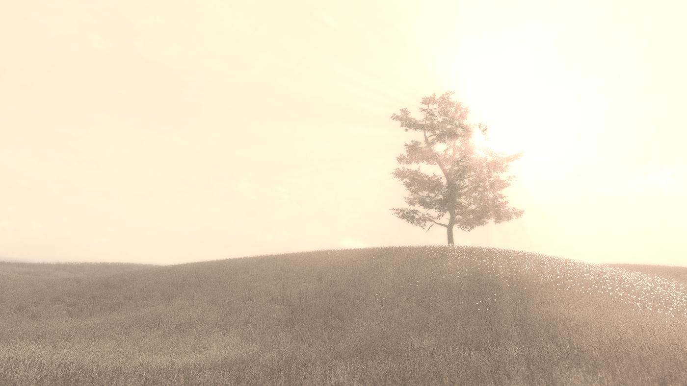 environment Nature Virtual reality vr