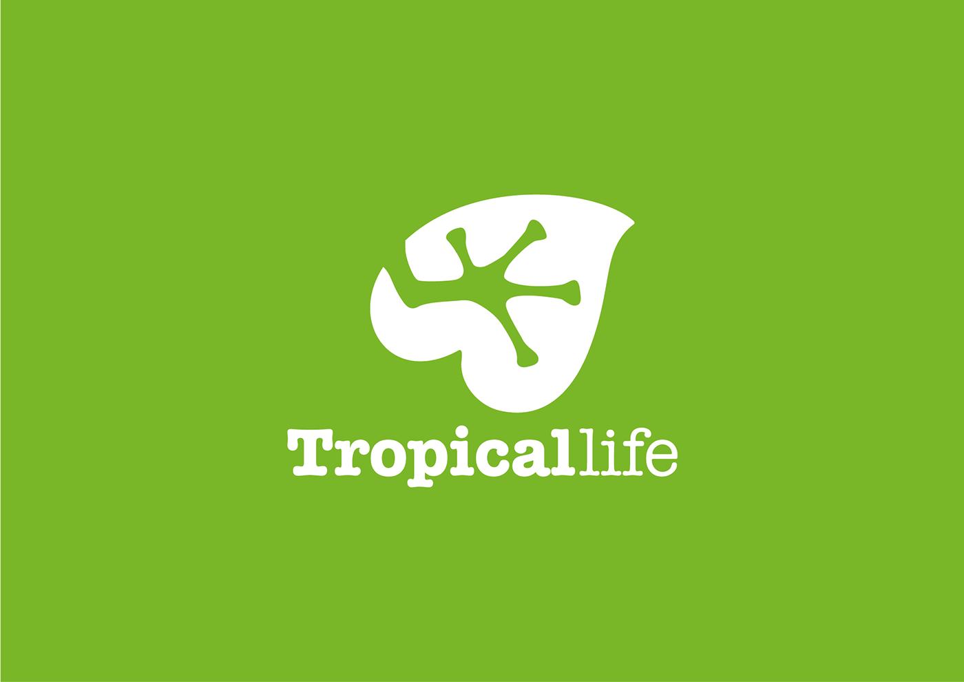 branding  logo identity