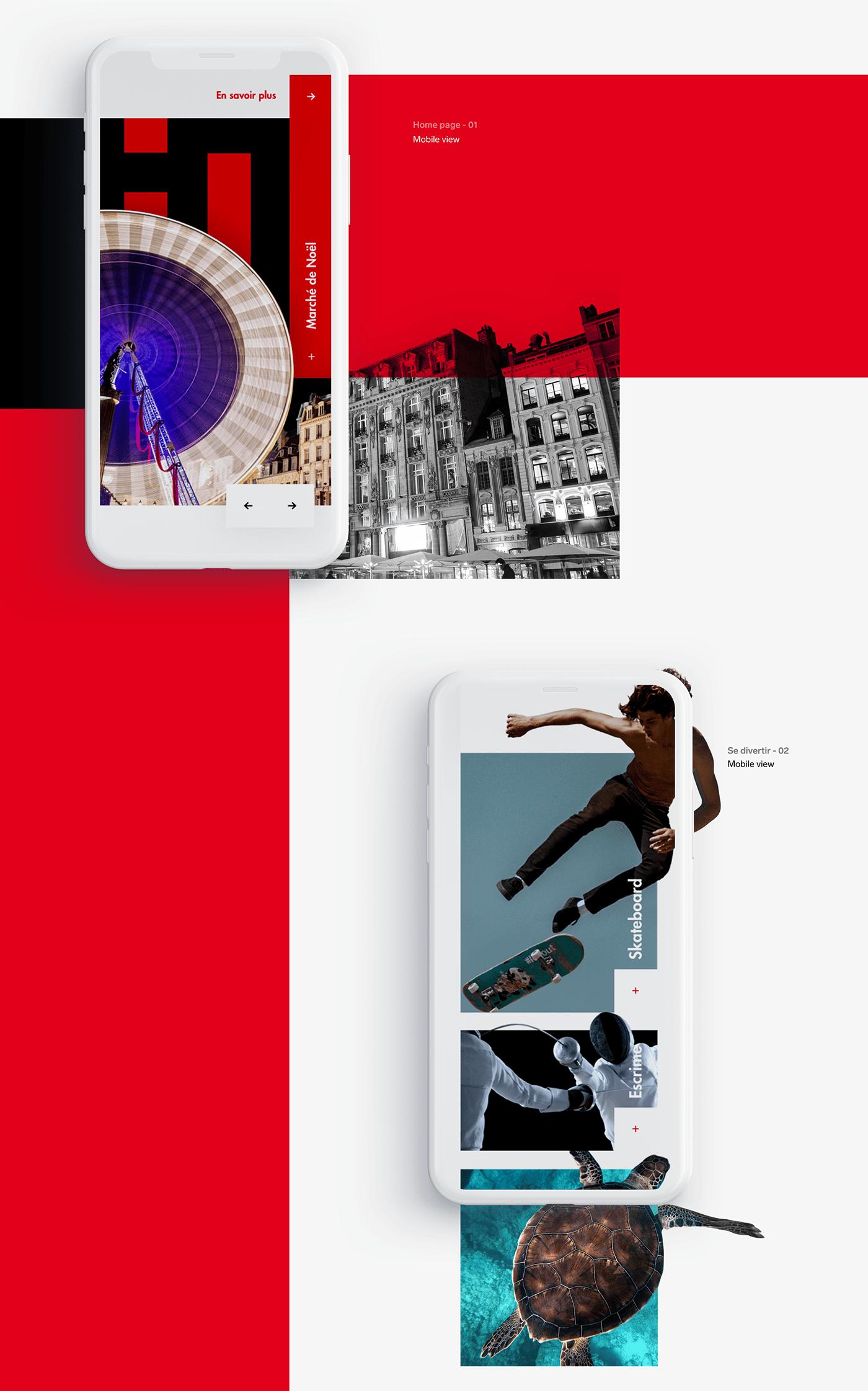 lille UI Webdesign interface web Responsive Design concept ui ui design user experience visual identity Website