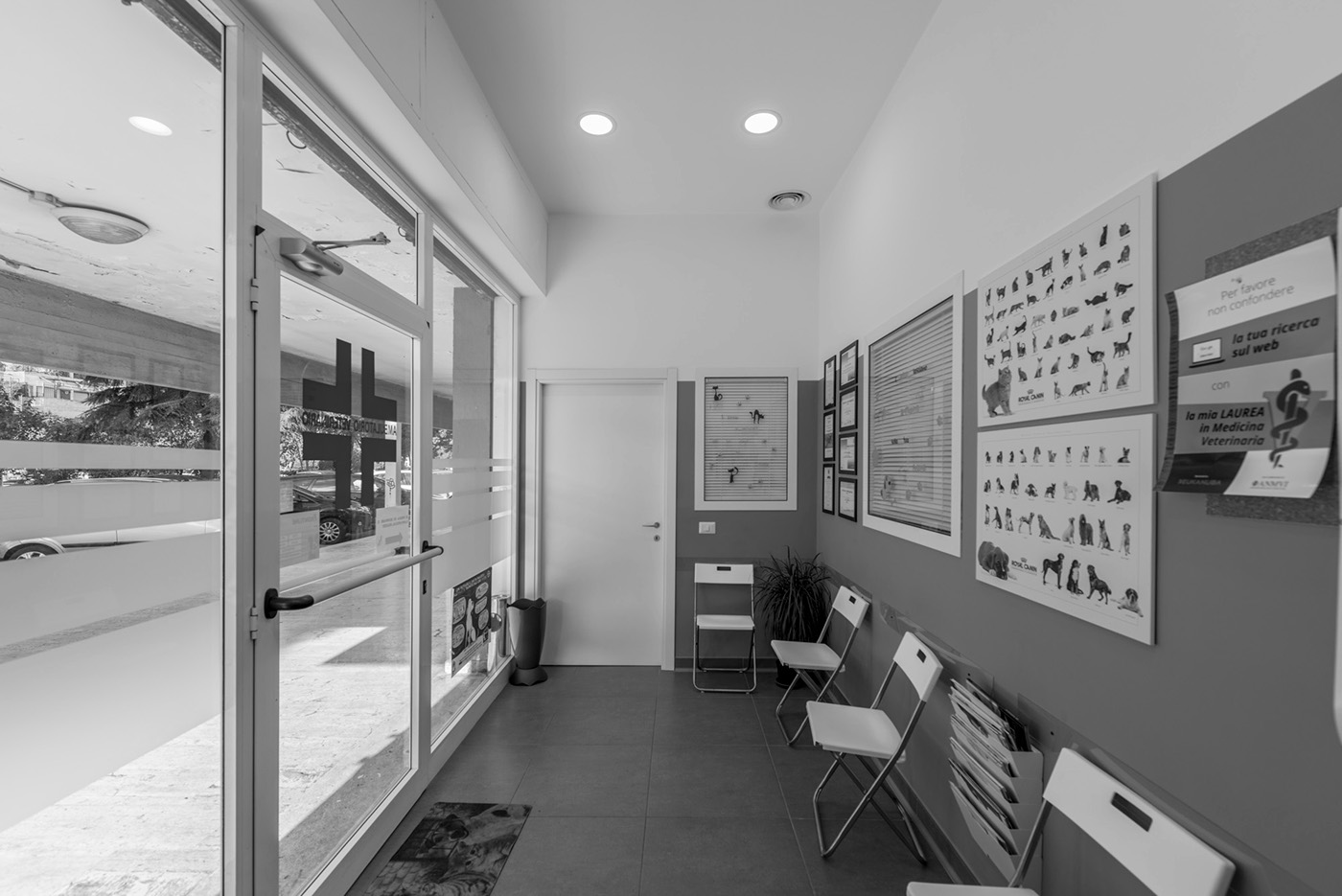 architettura design Fotografia roma veterinário